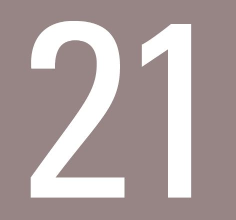 Línea 21